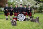 Besuch einer Scottish Deerhounds Zucht